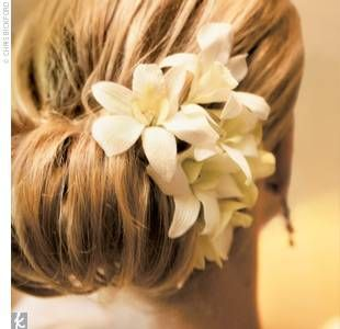 Hairstyles 2014 are relaxed elegance; the Wob, Braids, Ornate Ponys, Flowers, headpieces, Page Boys, Gold, Long and Wavy. Come see them all.
