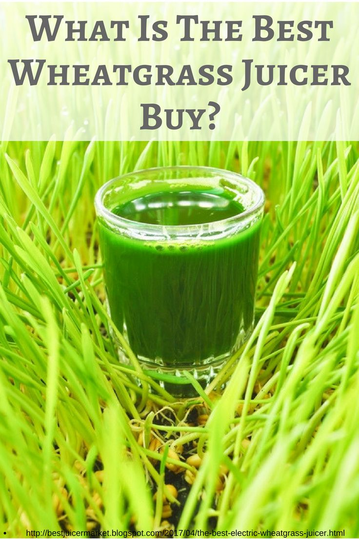 The best wheatgrass juicer buy is one that is affordable, dependable, and gets the job done without wasting valuable nutrients.