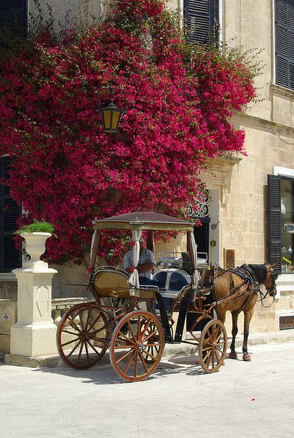 Carriage tour on the streets of Mdina, the old capital of Malta - old world charm and history.