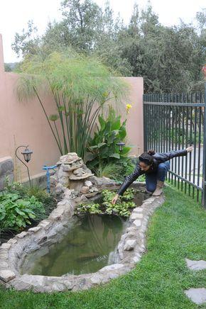 Mantenimiento de plantas acuáticas en fuente de agua