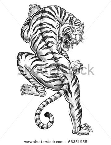 Shaded Asian Tiger by Tairy Greene, via ShutterStock