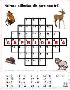 Cuvinte codificate - Animale sălbatice din țara noastră