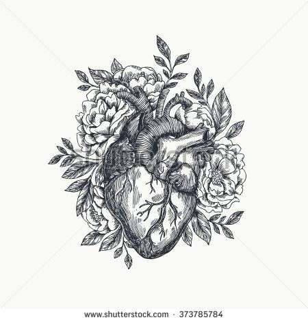 Anatomical heart with flowers. Vector illustration - stock vector