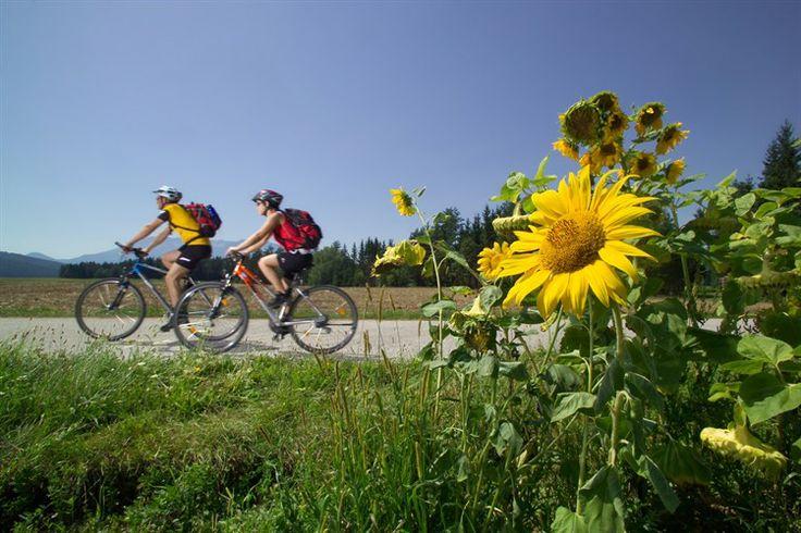 Drauradweg - jeder Pedalritter findet die ideale Tour