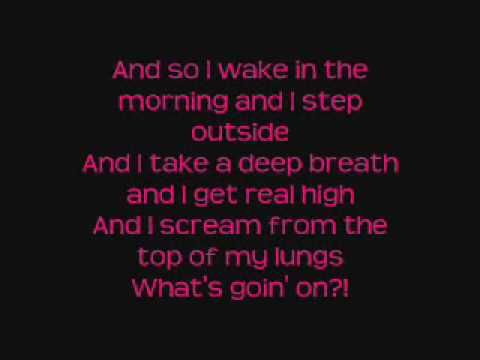 #4_Non_Blondes ☺ What's Up. Dedicated to the ones that will vote for a president this year.
