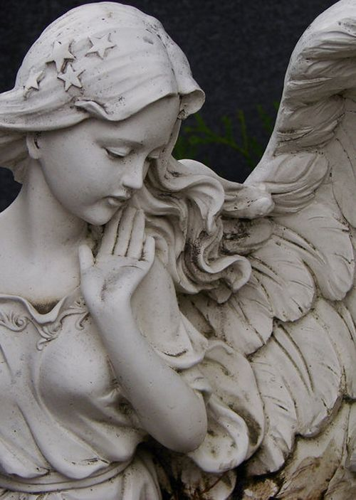 fraternity angel