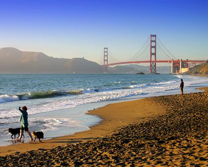 17 Best Images About Everything San Francisco On Pinterest