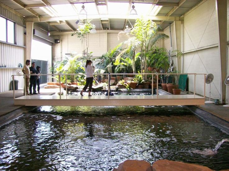Interior design indoor fish pond design with small garden for Indoor nature design challenge