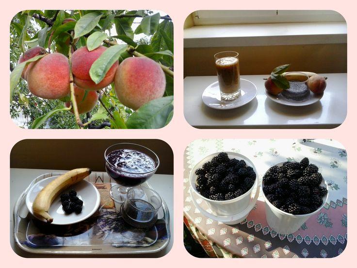 Ovocné koktejly z chia semínek