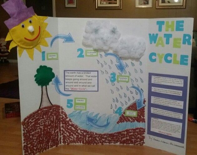 Water Cycle Poster Project