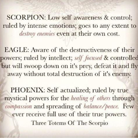 3 totems of Scorpio