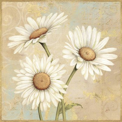 Varieté de Láminas para Decoupage: Láminas de Flores y letras..