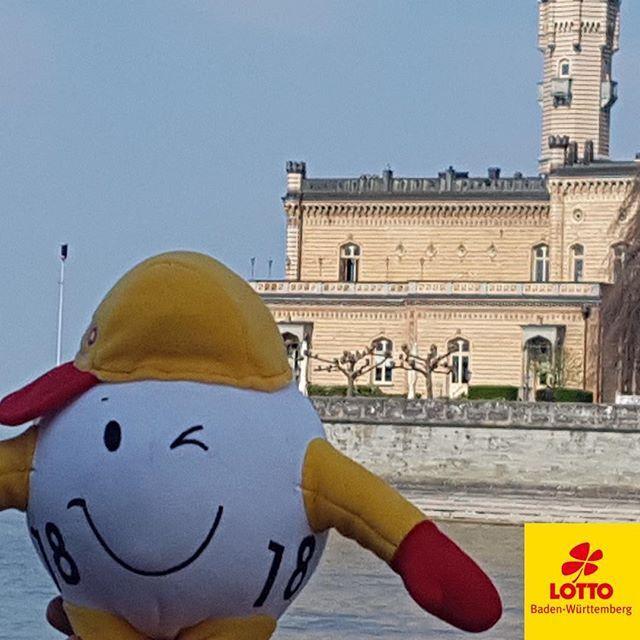 #Montag ist WINNY-Tag… Und unser #Maskottchen liebt es zu #verreisen. Er hat aktuell einen Platz im #Koffer einer Kollegin ergattert und sich auf den Weg zum #Bodensee gemacht. Dort besucht er das Schloss #Montfort in #Langenargen. #badenwürttemberg #lakeofconstance #travelgram #happylifestyle #reisebegleitung #mitfahrgelegenheit #lottobw #Bodenseebilder #bodenseeliebe #bodenseekreis #bodenseeregion #bodenseepic #bodenseekultur #reisefotografie #reisenmachtglücklich #reiseblogger #reiselust…