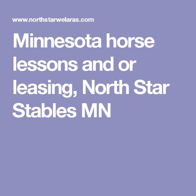 Sso Quote: 17 Best Ideas About Star Stable On Pinterest