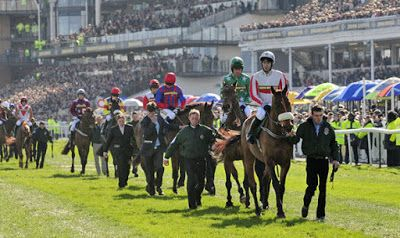 Group Horse Daily: Best Grand National Odds on the top 5 runners
