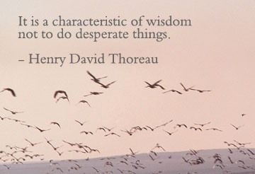 Wisdow Quotes: Quotes Facebook, Inspiration, Desperate Things, Characterist Of Wisdom, Graphics Quotes, Wisdom Quotes, Comment Graphics, Henry David Thoreau, Desperate Quotes