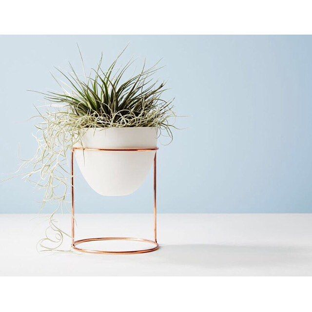 A beautiful copper and peach eggshell plant stand. theguideonline.com.au