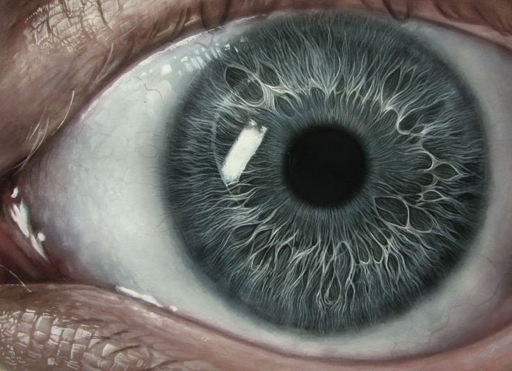 Eye Study.jpg (800×581) (2014)
