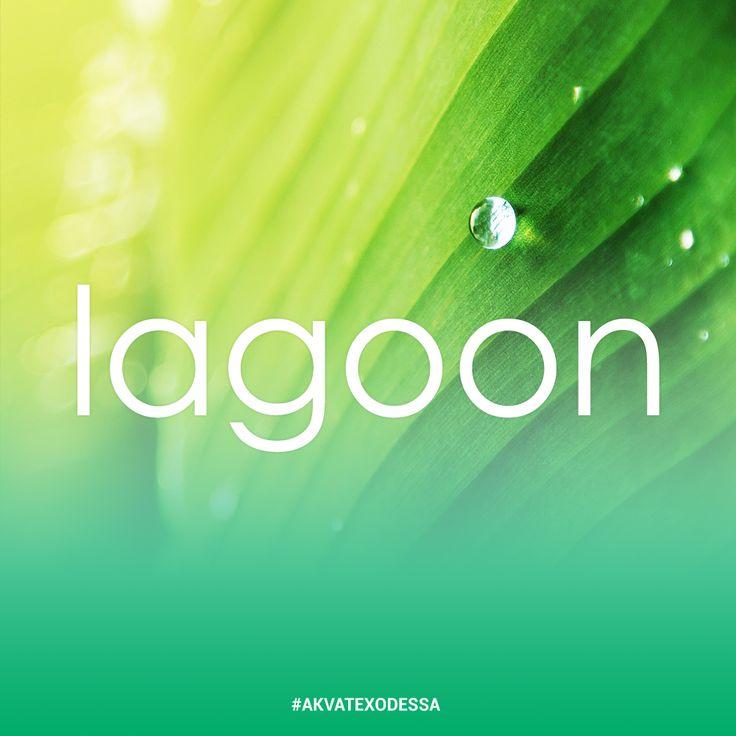 Ожидаете от стирки чудес? Lagoon превзойдёт ваши ожидания! Экологическая чистка избавит от любого вида загрязнений изделия из хлопка льна, шелка, шерсти и вискозы.