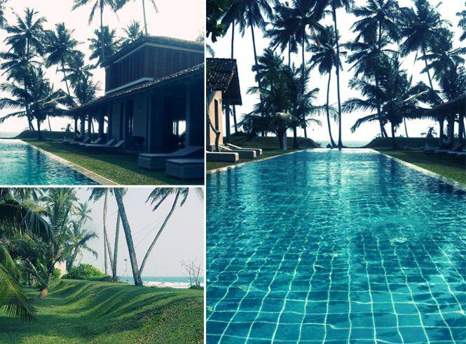 Hotel Frangipani Tree - Sri Lanka