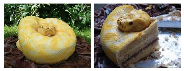 Francesca Pitcher's 6 year old daughter, Claudia, who loves reptiles & wanted a spooky-themed birthday party. She wanted something that would scare her friends. Pitcher suggested a snake cake & made an Albino Burmese Python replica.: Birthday Parties, Spooky Them Birthday, Snake Cakes, Snakes Cakes, Carter Birthday