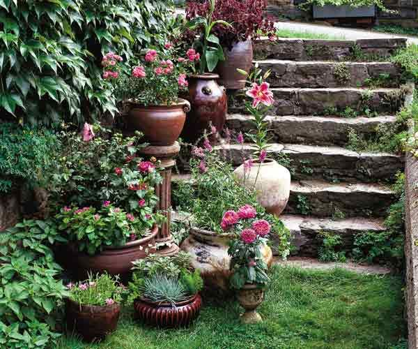 17 Best Images About Gardening Tips And Ideas On Pinterest: 17+ Best Images About Container Garden Ideas On Pinterest