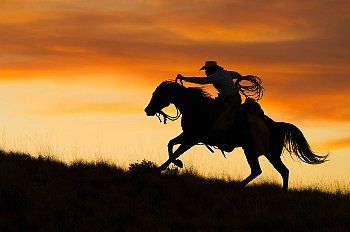 Silhouette of cowboy riding horse against sunset sky.