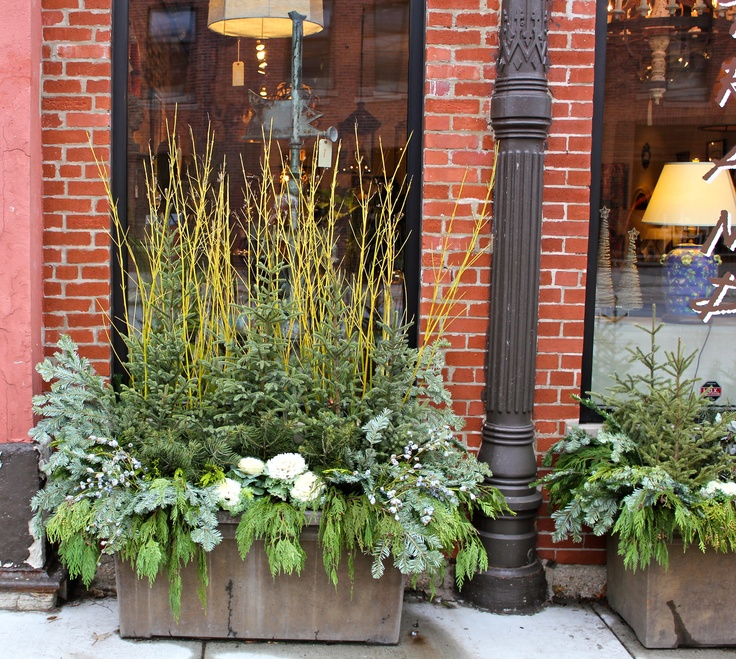 Enhance already planted containers