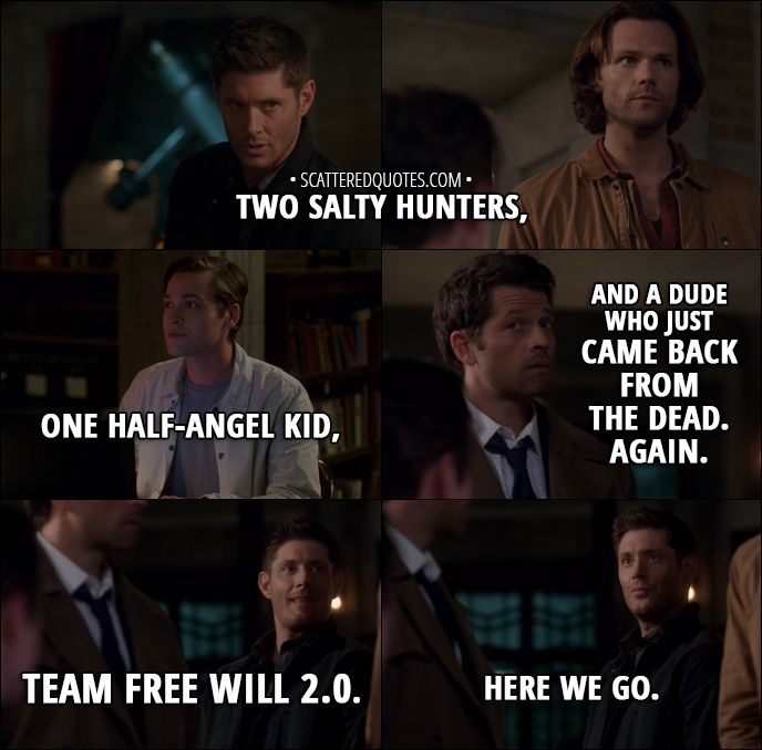 Quote from Supernatural 13x06 -  Dean Winchester: Two salty hunters, one half-angel kid, and a dude who just came back from the dead. Again. Team Free Will 2.0. Here we go.