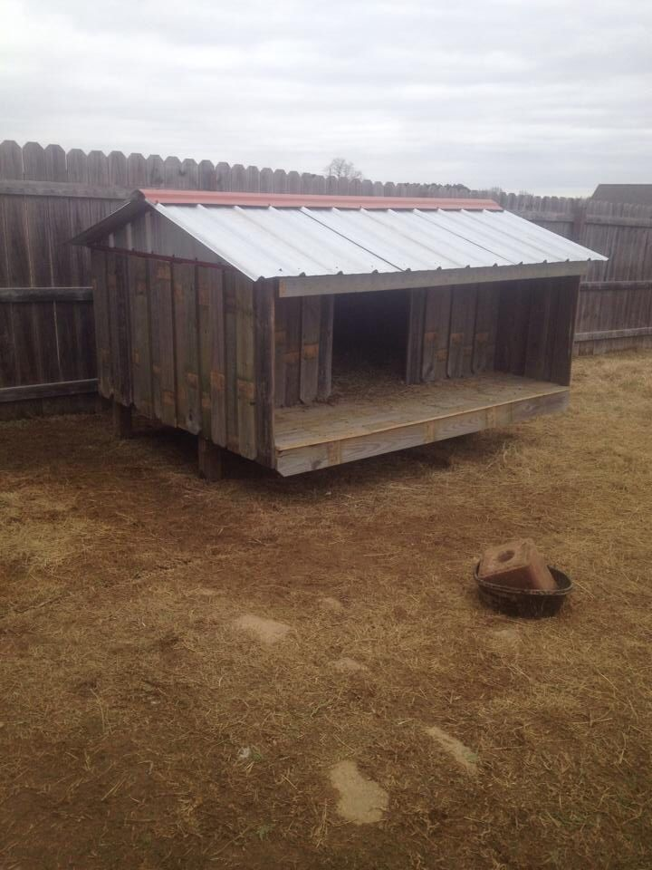 Metal Goat Shelters : Images about goatness on pinterest flats the roof