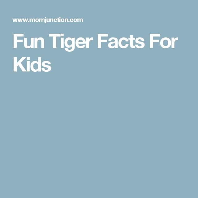 Fun Tiger Facts For Kids