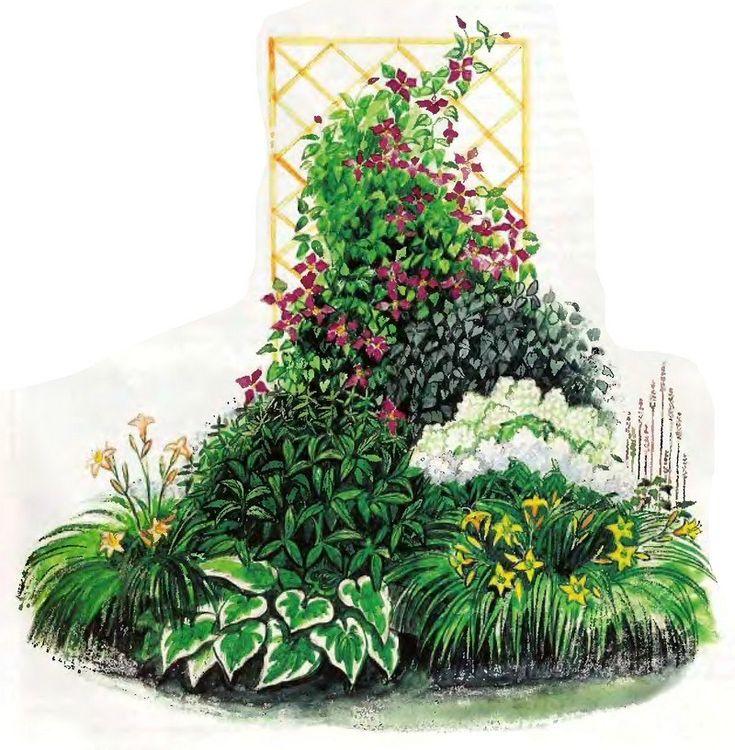 Схемы цветников с описанием | 46 фотографий