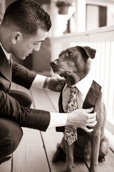 """Why We Love It: From man's best friend to best man, we love this adorable dog's tuxedo!Why You Love It: """"I'm so sharing this! My couples will love it!""""—Barraud Caterers Limited """"That dog's face!!""""—Kristi Y. """"It's as if the dog is saying, 'please don't do this to me...' Great shot!""""—Nargis D.Photo Credit: Jenna Newman Photography"""