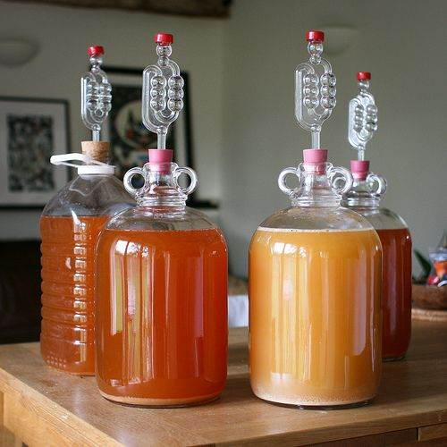 Making Cider at Home - Worth adding to the plan (for a happy home)