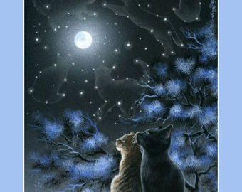 Cyperse kat Print magie van de nacht door Irina Garmashova