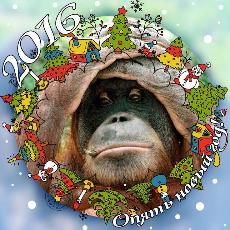 Обезьяна картинка новый год