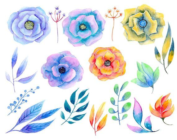 Watercolor Flower Clipart 17 Aquarelle Bright Floral Colorful