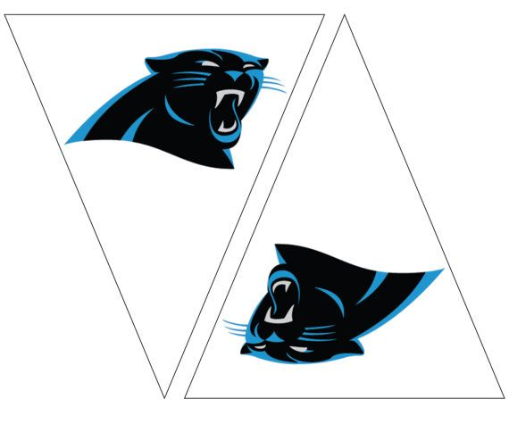 Carolina Panthers Flag. Easy Party decorations for Carolina Panthers football fans. Immediate download for game party decor in Carolina