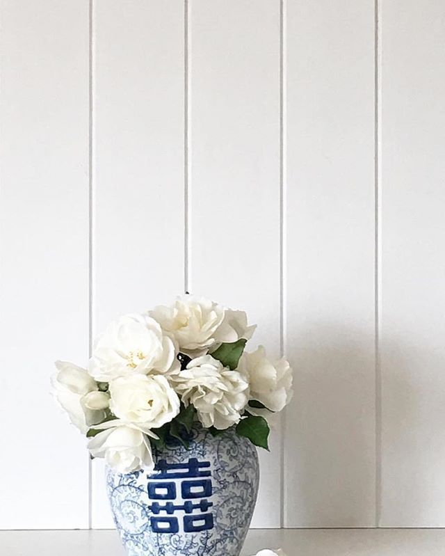White iceberg roses in a blue and white ginger jar.