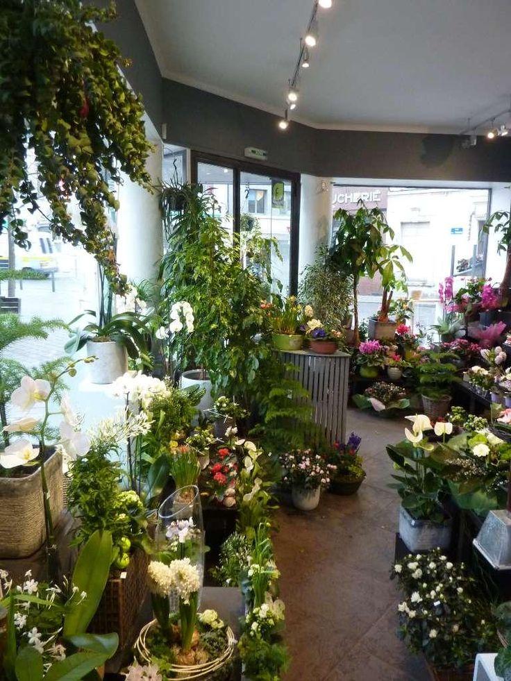 Les 25 meilleures id es de la cat gorie magasins de fleurs for Magasin de plantes