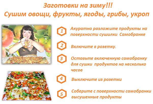Заготовки на зиму. Сушилка Самобранка сушит овощи, фрукты ягоды быстро и недорого. Почему потому что она потребляет всего 100 вт. Экономично. http://zacaz.ru/products/dom-byt-kuhnya/kuhonnye-elektrotovary/sushilka-dlya-ovowej-i-fruktov-samobranka/