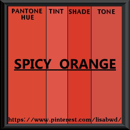 Pantone Seasonal Color Swatch Spicy Orange My Pantone