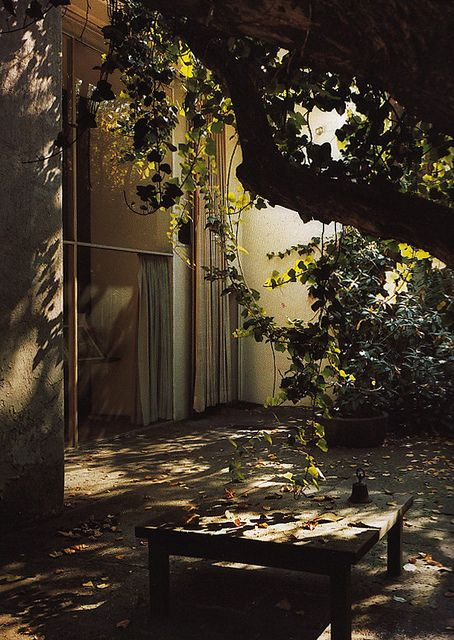 Barragan shady courtyard dreamy afternoons and climber clad wall