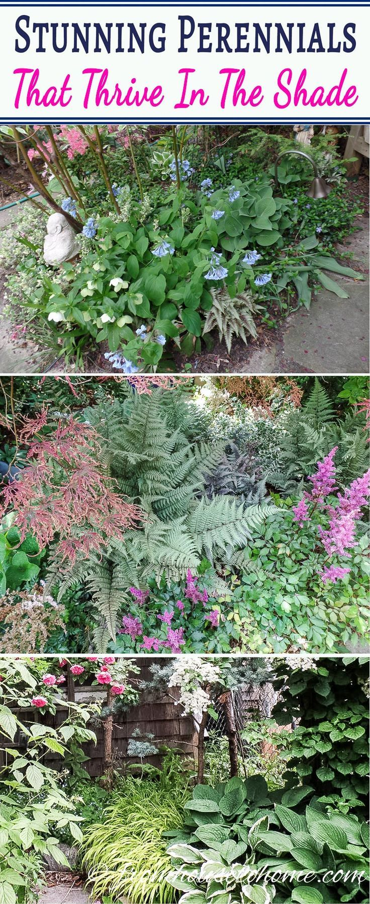 I LOVE these beautiful flowering perennial ground cover plants. I will be planting them under the bushes in my front yard to help keep the weeds down. #shadeperennials #perennialgroundcover