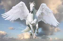 pegasus | Find Pegasus Constellation