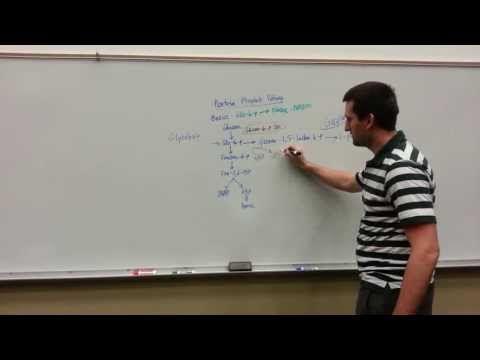 The Pentose Phosphate Pathway Basics! - YouTube