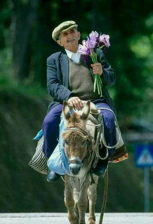 самые картинка шуточная принц на коне помним прошлое