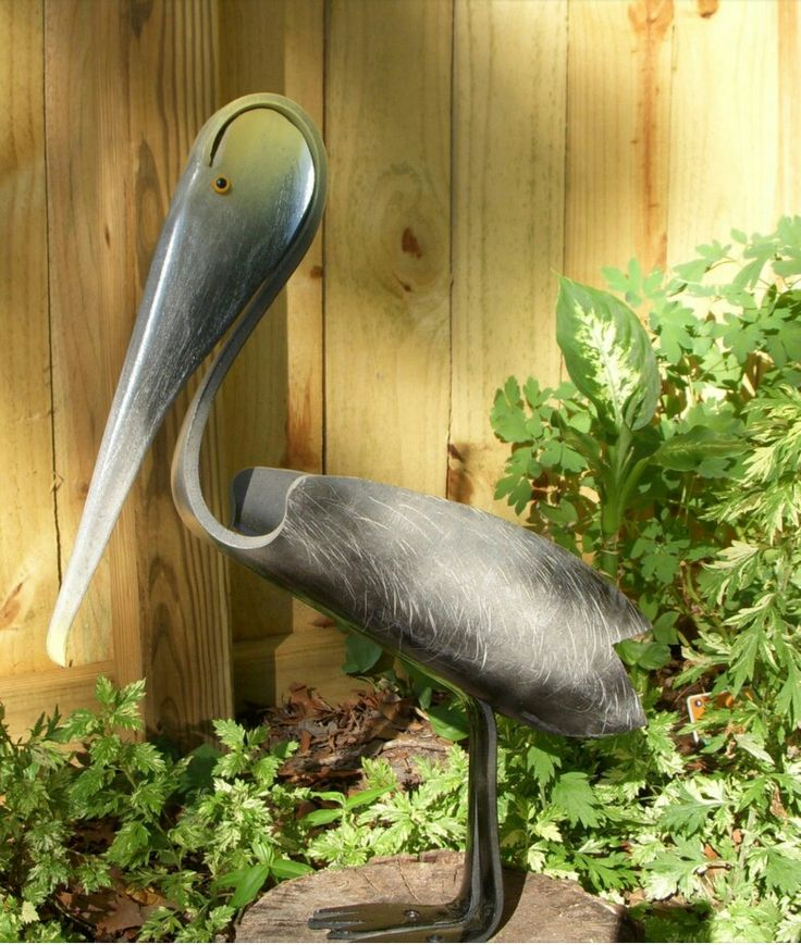 Pelican pvc pipe birds