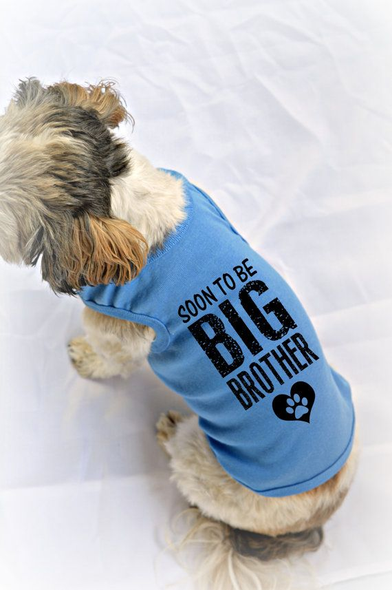 Soon to be Big Brother Dog Tank. Pregnancy Reveal Idea. Custom Dog Tank Tops. Big Brother Dog Shirt. Small Pet Clothes. Gift for Expecting Mother. Big Brother Dog Top. Small Dog Shirts. Pet apparel. Dog Clothes.