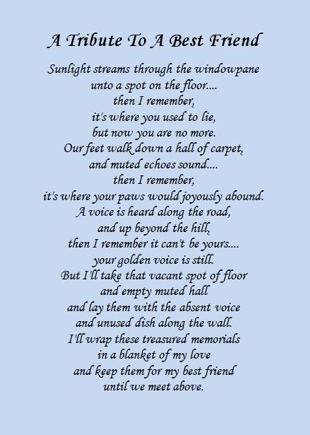 Gallery For > Pet Loss Poems